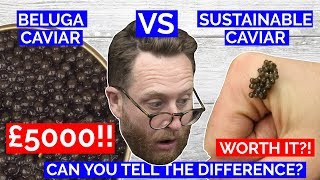 £5000 WORLDS MOST EXPENSIVE CAVIAR Vs UK sustainable Caviar by Food Busker