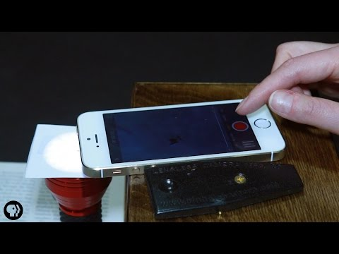 You Can Turn Your Phone Into A Microscope
