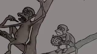 LUCU : Monyet makan durian.....