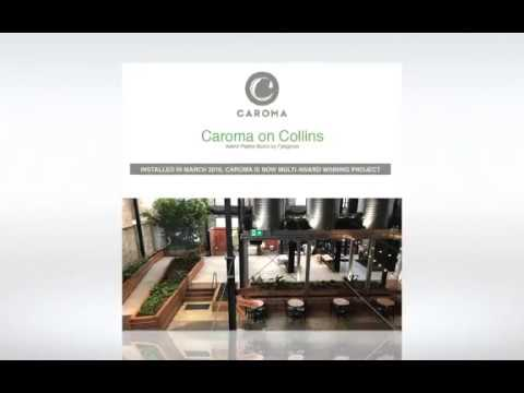 Caroma on Collins - Greening by Fytogreen