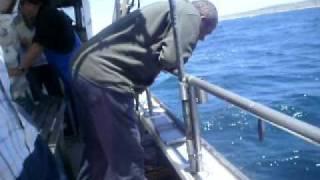 Video pesca mestre inacio o homem que sabe fazer engordo para pescar pargo MP3, 3GP, MP4, WEBM, AVI, FLV Desember 2017