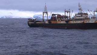 Polish fishing krill trawler (90s 2012)