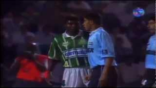 Com a conquista do bicampeonato brasileiro em 1994, o Palmeiras garantiu presença na Libertadores de 1995 e, pela segunda...