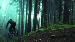 Amazing Freeride Forest - YouTube