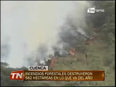 Incendios forestales destruyeron 582 hectáreas en lo que se va del año