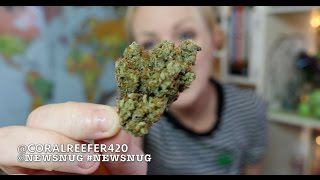 OHIO LEGALIZES MEDICAL CANNABIS?! | NewsNug Recap | CoralReefer by Coral Reefer