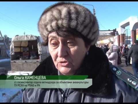 Нарушения ветеринарно-санитарных требований при реализации живой рыбы в Ростовской области