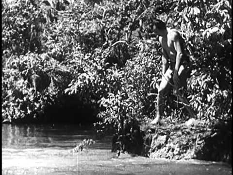 The New Adventures Of Tarzan (1935) Jungle Adventure