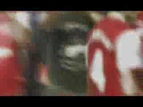 Los 10 mejores golesde Cesc Fábregas