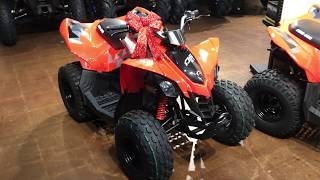 5. 2019 Can Am DS90 Kids / Youth ATV