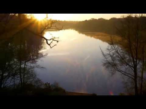 Aerial views of Virginia Water lake and The Valley Gardens, Windsor Great Park