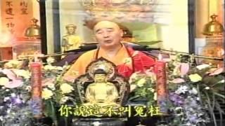 Kinh Vô Lượng Thọ Huyền Nghĩa tập 01 - Pháp Sư Tịnh Không
