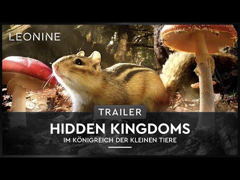 Hidden Kingdoms - Im Königreich der kleinen Tiere - Trailer (deutsch/german)