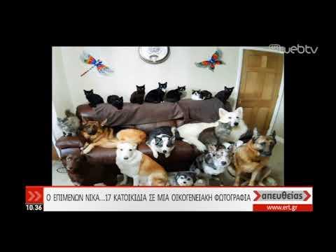 Οικογενειακή φωτογραφία με 17 κατοικίδια! | 04/12/2019 | ΕΡΤ