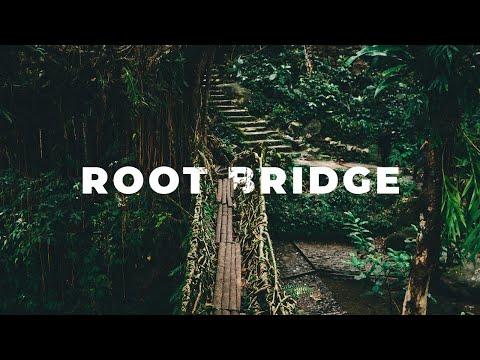 THE MYSTERIOUS ROOT BRIDGE IN CHERRAPUNJI | Meghalaya Web Series | North East India | EP 4