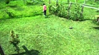 Fast grass cutting