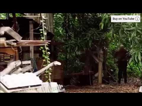 Hawaii Five-0 season 7 episode 22