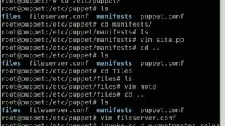 Server Configuration With Puppet
