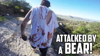 Video VICIOUS BEAR ATTACK! (Warning: GRAPHIC CONTENT) MP3, 3GP, MP4, WEBM, AVI, FLV Agustus 2017