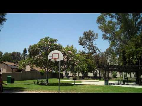 OMGretards' HD Version - (Amazing Basketball Shots)