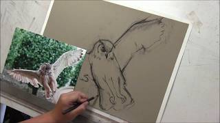 Time Lapse Pastel Drawing Lesson, Owl Part 1