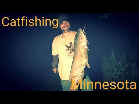 How to catch Huge channel catfish (видео)