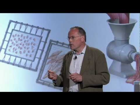 Innovation Forum 2012: Mark Post on Kill-Free Meat