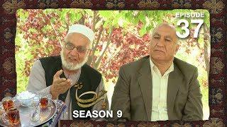 Chai Khana - Season 9 - Ep.37
