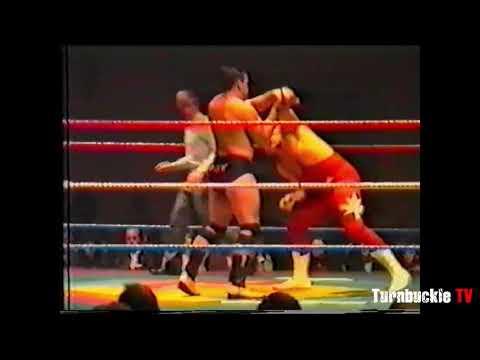 Danny Collins vs. Owen Hart (ORIGINAL FORM)