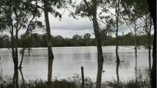 Kingaroy Australia  city photos : Kingaroy & Nanango January 2013 floods