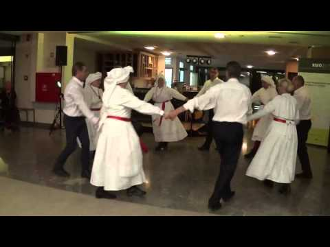 KMO and LTEC 2015 Formal Conference Dinner - Traditional Slovenian Dance 1