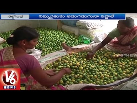 Nalgonda Farmers Face Problems With Lack Of Minimum Support Price For Citrus | V6 News