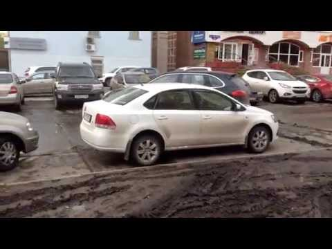 34 СтопХам Омск - О зебрах, свиньях и тротуарах