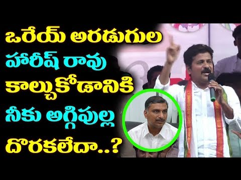 Revanth Reddy Strong Comments On Harish Rao | Irrigation Minister Harishrao | Cm Kcr | Revanth Reddy