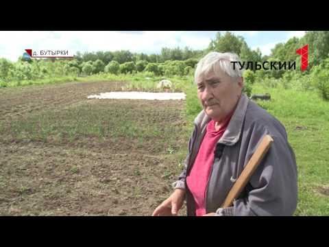В Тульской области женщина умерла после укуса гадюки