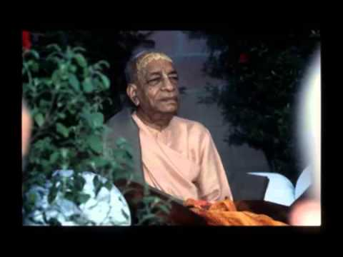 Video The Source Of Knowledge Should Be By Hearing - Prabhupada 0012 download in MP3, 3GP, MP4, WEBM, AVI, FLV January 2017