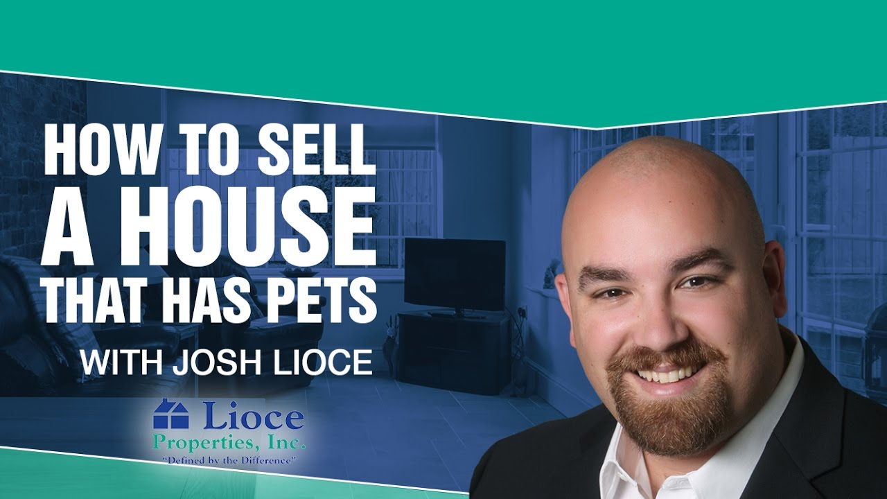 4 Rules for Selling a Home With a Pet