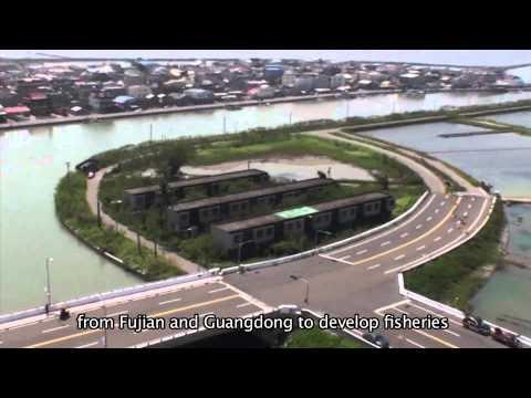 【Taijiang】Taijiang:Vibrant Wetland Sanctuary(12mins)