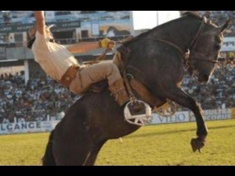 caballos salvajes - Esta disciplina tiene por objeto el desarrollo del caballo mediante un entrenamiento racional, metódico y equilibrado por medio del cual el jinete consigue q...