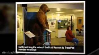 Homer (AK) United States  city photos gallery : Pratt Museum - Homer, Alaska, United States