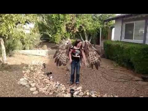 A Beautiful Pair of HumanSized Pneumatic Articulating Feather