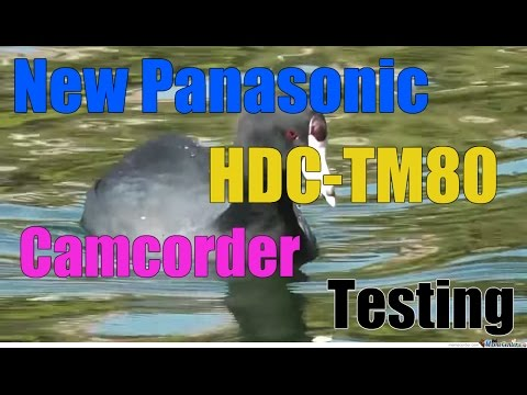 New Panasonic HDC-TM80 Camcorder Video Test