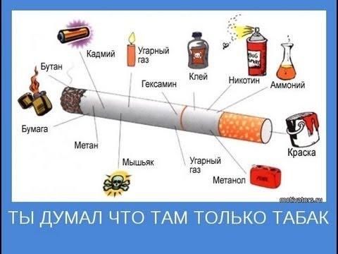 Реальный мир  Курение вред и последствия  Вся правда которую от нас скрывают