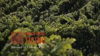 Swiss Wine - Tessin - Ticino