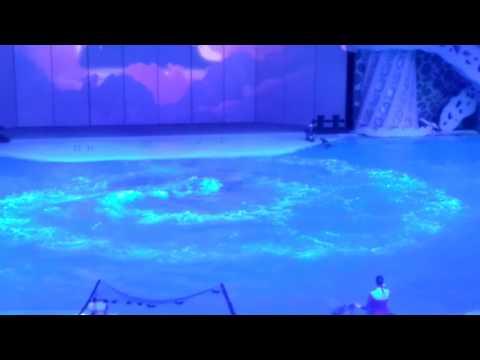ДРИФТ НА МОРСКОМ СУПЕРКАРЕ rасing оn dоlрhins (забавные животные) - DomaVideo.Ru