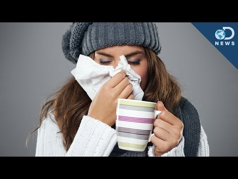 In - Cold and flu season are in full swing. But why when the weather turns cold do we all seem to get sick? Laci has the answer. Read More: WHY KIDS TOP THE LIST ...