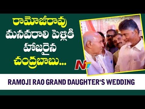 CM Chandrababu Attends Ramoji Rao Grand Daughter's Wedding   NTV
