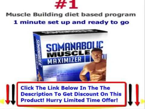 The Muscle Maximizer Fitness And Training Guide + Powerbar Creatine Muscle Maximizer Erfahrung