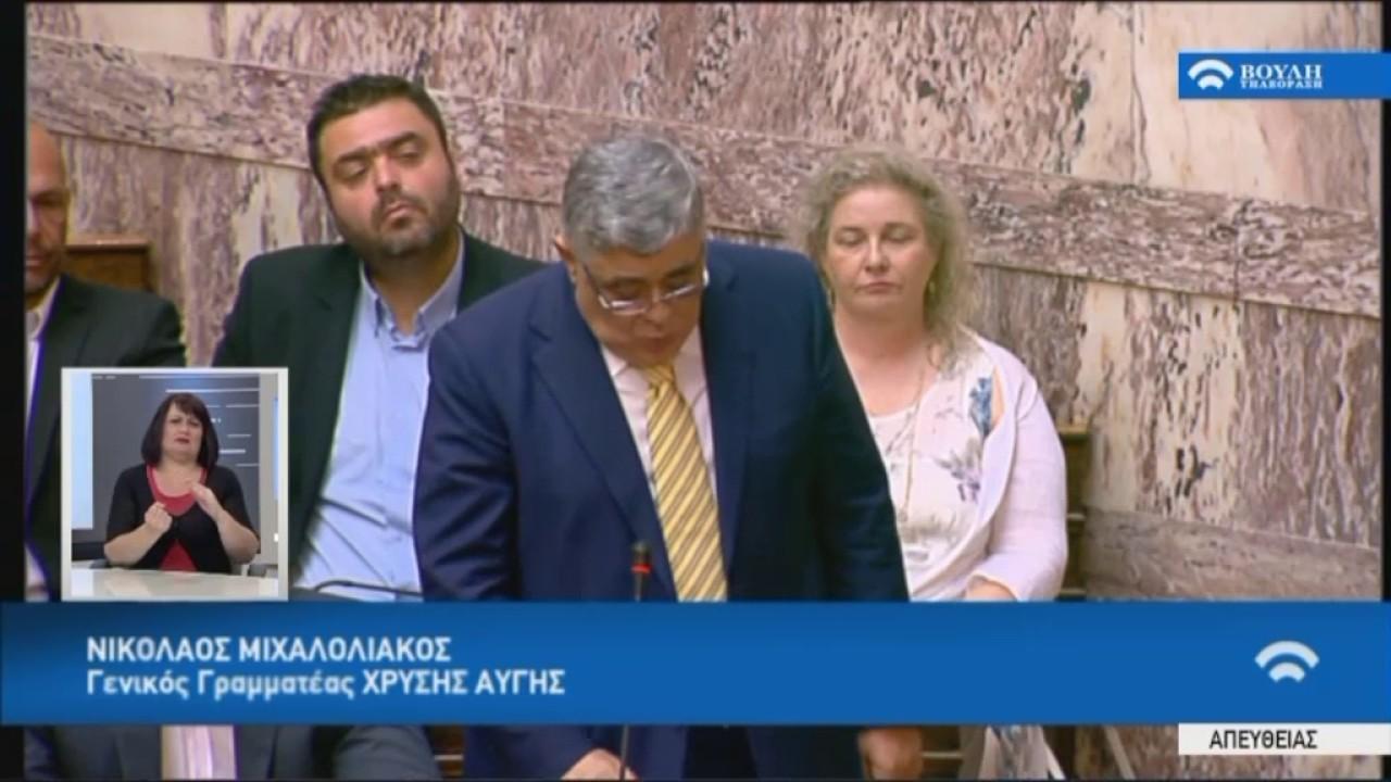 Δευτερ.Γ.Γ. Χ.Α. Ν.Μιχαλολιάκου στην Προ Ημερησίας Διατάξεως συζήτηση(Οικον,Eurogroup) (03/07/2017)