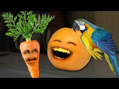 realannoyingorange - What's more annoying than Orange? Orange with a parrot. AO TV Show on iTunes: http://bit.ly/AOTViTUNES AO CHRISTMAS ALBUM: http://bit.ly/AOXmas MERCH: AO TOY...